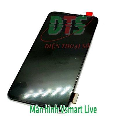 Màn Hình Vsmart Live 2