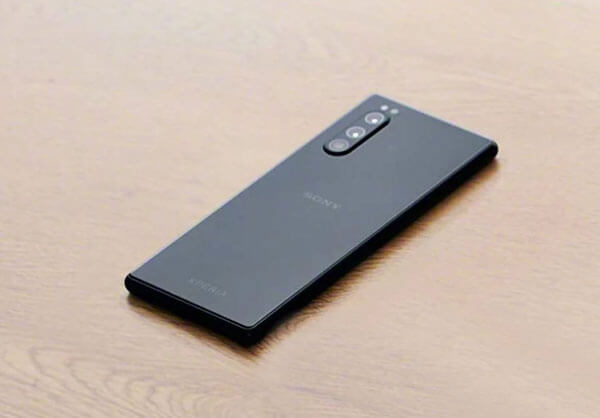 Sony Xperia 2 Thay Nap Lung 1